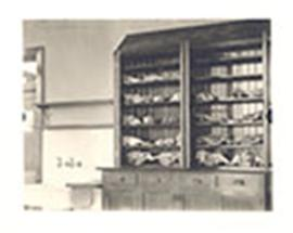 Animal skulls and bones displayed on shelves, Peking Union Medical College, Beijing, China.