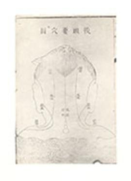 Chinese medical diagram of a neck and back of head.