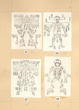 "Plate 4 from E.V. Cowdry's: ""A comparison of ancient Chinese anatomical charts with the 'Fun..."