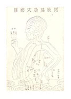 Chinese medical diagram of an upper body.