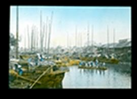 View of a busy harbor with many sailboats and a small passenger ferry, China.