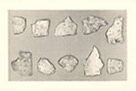 Oracle bone fragments inscribed with symbols, possibly from the Peking Man excavation site.