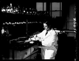 Portrait of Oliver H. Lowry working in his laboratory.