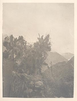 View of a Chinese landscape.