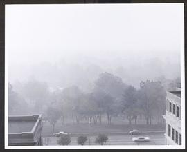 View of Forest Park from the Mallinckrodt Institute of Radiology, Washington University Medical C...