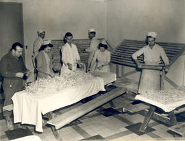 Men and women at work in the noodle factory, 21st General Hospital, Ravenel Hospital Hospital, Mi...