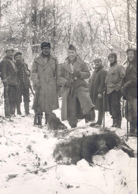 Wild boar hunt #1, Major Joseph C. Edwards and group posing with a wild boar.