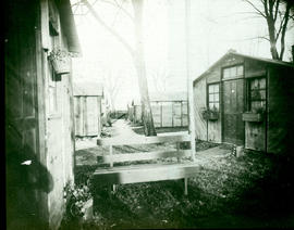 Hut area, Base Hospital 21, Rouen, France.