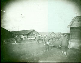 German POWs on convoy duty carrying patients.