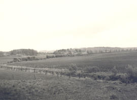View of the countryside near Ravenel Hospital, Mirecourt, France.
