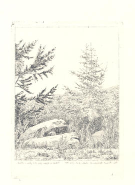 Reversed etching of landscape with trees and rocks.