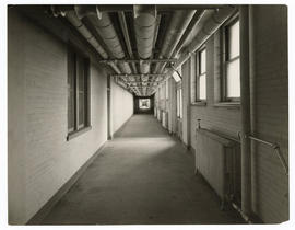 Barnes Hospital, basement corridor connecting kitchens and supply room, c.1914-1915.