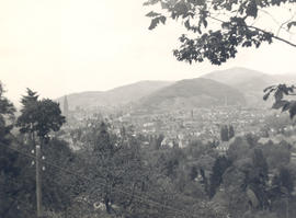 View of Freiburg, Germany from a hillside.