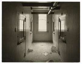 Barnes Hospital, kitchen and storage rooms, c.1914-1915.