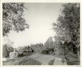 View of grounds and landscaping surrounding the home of Vilray P. Blair.